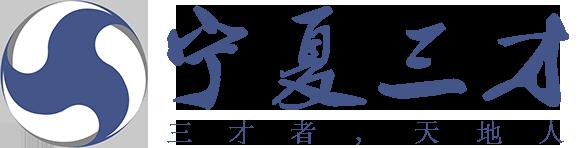 宁夏三才信息科技有限公司